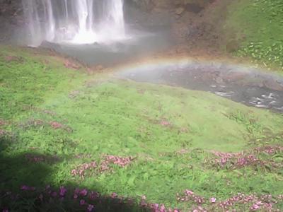 示談成立。事故処理完了。滞在70日、ラオスのセコンの街をようやく脱出。ありがとう、セコンの街、ラオラオ人、ベトベト人。途中、緑と花と虹の神秘的な滝に立ち寄って、パクセーの街に帰還。バックパッカーライダー復活す。そして終了す。。。