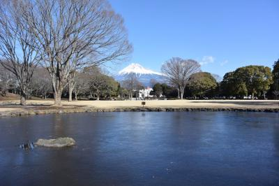 散歩 2018.01.25 =富士から吉原へ・中央公園の池が凍っていました=