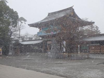 大雪の中 寒川神社初詣