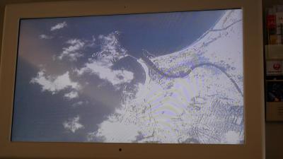 JALホーチミン搭乗記2018/01 (TYO:OKA経由=SGN Cビジネス/Yエコノミー) 年の最初に頂きハッピー。しかし関東大雪の影響でドタバタ計画変更!
