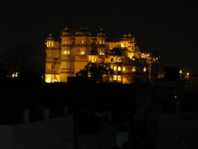 ラジャスタンの古城めぐり&ベンガルタイガーサファリ