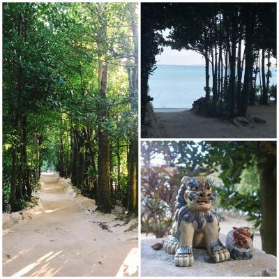 【2018年1月】週末TRIP!沖縄1泊2日でフクギ並木の古民家に泊まって癒される。