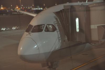 2018年1月韓国鉄道旅行1(羽田乗り継ぎで金浦空港へ)
