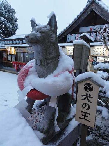 戌年に名古屋の伊奴神社へ