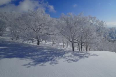 冬だ、スキーだ、北海道。ニセコアンヌプリでパウダー満喫!(^^)!