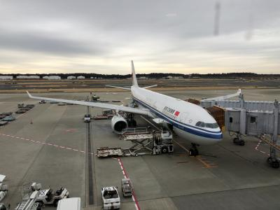 2018 SFC修行 中国国際航空(エアチャイナ )で行くエクストリームSINタッチ0泊2日 後編