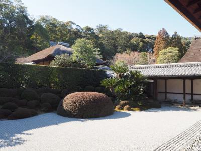京都・南山城の一休寺と観音寺