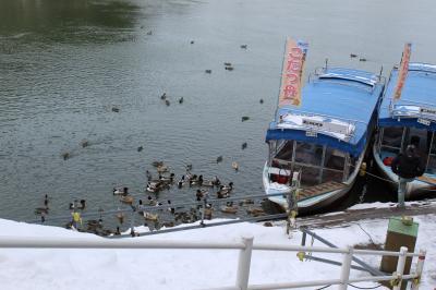 【冬季限定】丸森 阿武隈ライン船下り こたつ舟