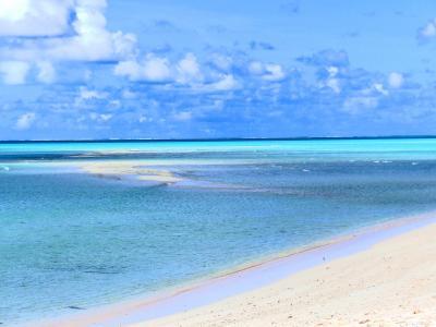 シラオネッタイチョウとブルシャンブルーの海