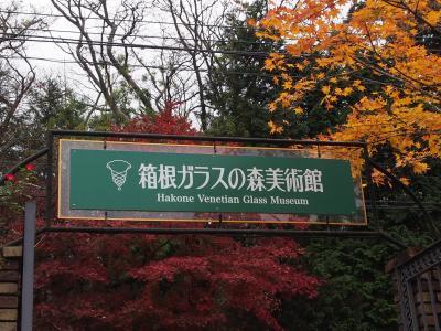再び箱根 紅葉を訪ねて2