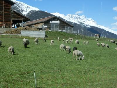 2017GW スイス36:ツェルマット→クール 氷河急行の路線を普通列車で往く3