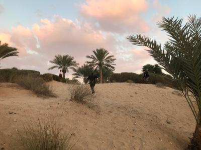2018 スウェーデン/デンマーク/ドバイ ⑯ドバイ2日目(Bab Al Shams Desert Resort & Spa/前編)