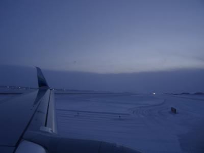 見るぞ! 2年連続。 今年は極寒。(その3:実質はじめてのアメリカ、はじめてのアラスカ)