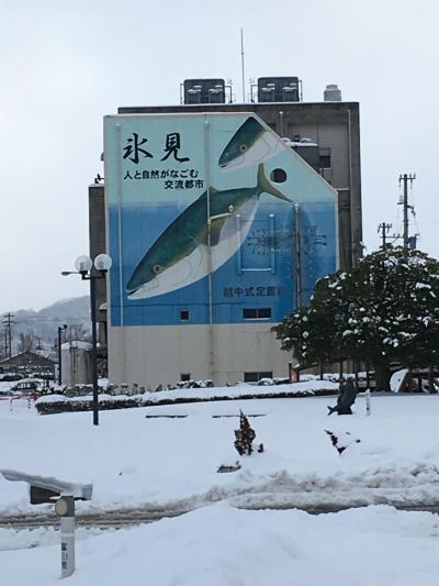 旬の寒ブリを食べに厳冬の富山