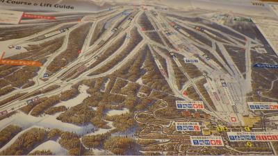 最高の雪質に恵まれた安比高原スキー場