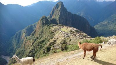 ペルーアンデス紀行11 午後はマチュピチュ観光