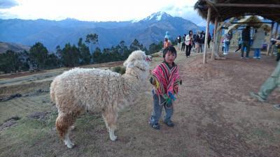 ペルーアンデス紀行13 インカの聖なる谷巡り: マラス塩田・モライ段々畑~クスコ