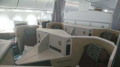 ジャカルタでクリスマス - SIN経由 JAL B787-9 ビジネスクラス