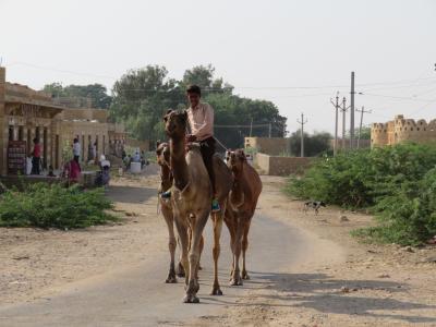 初インドを一ヶ月縦断一人旅してみた 8日目 1泊3食付きシングル150ルピーの宿に泊まってみた。