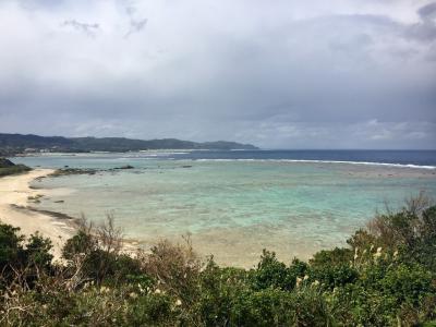 JALどこかにマイルで奄美大島1、2日目
