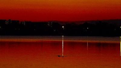 早朝散歩 伊丹市瑞ヶ池の朝日 上巻。