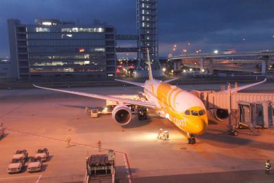 【東京-大阪-ホノルル】 LCCでハワイひとり旅 飛行機の部