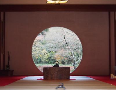 紅葉の見ごろが過ぎた北鎌倉御朱印巡りとお台場のイルミネーション