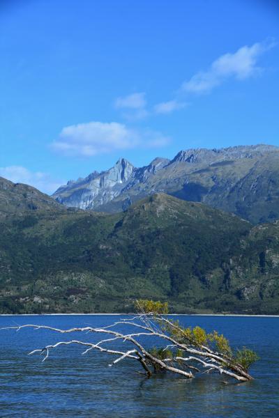 ニュージーランド ワナカからフランツジョセフ氷河へ移動