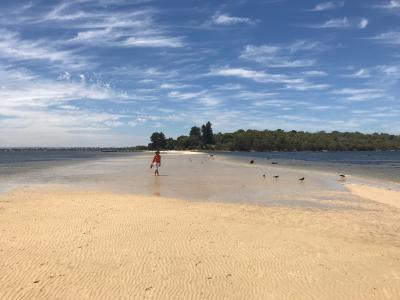 パース観光の穴場「 ポイント・ウォルター・サンドバー 」編 <オーストラリア周遊24日間 >