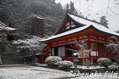 念願!! 雪の談山神社