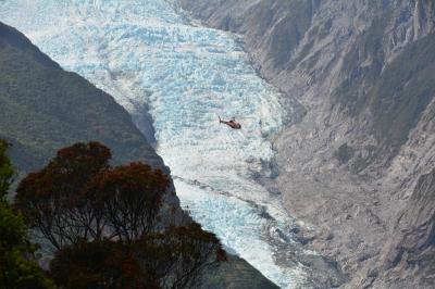 ニュージーランド フランツジョセフ氷河 ウォンバット・レイク アレックスノブハイキング