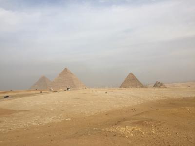 【感動のエジプト周遊8日間】ツアーに参加して...①