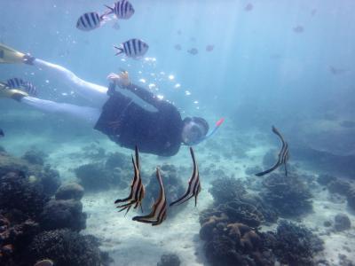 2018 年始をセブで シャングリラホテルビーチの魚影レポート