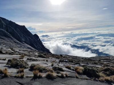 ★行き当たりばったりの旅~ボルネオ島:キナバル登山