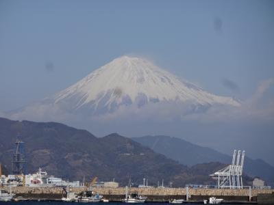 ☆極寒の2月 暖かさを求めて静岡へ☆三保の松原 レンタサイクル No2