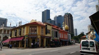ゲンティンドリーム号で初めてのクルーズ  2日目   シンガポール観光