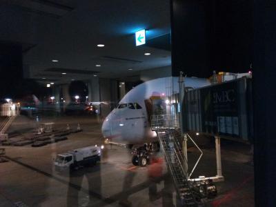 2018.2ロンドン旅行<1>東京〜ドバイ