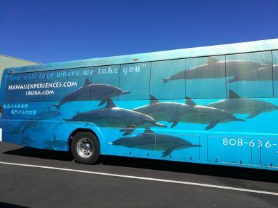 ハネムーンでハワイ島→オアフ島8泊10日 6日目 イルカとアロハとアラモアナとステーキ編