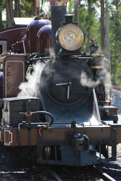 ヤラバレーワイナリー&パッフィンビリ蒸気機関車ツアー(蒸気機関車乗車編)