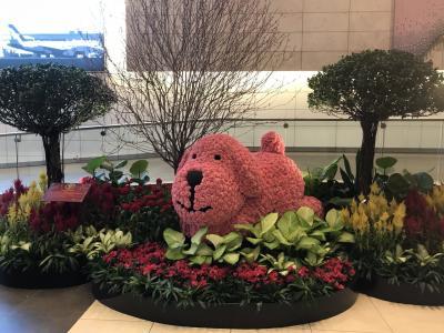 シンガポール46回目(2018年2月)