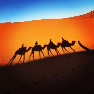 年末年始 スペイン&モロッコ ⑤フェズ&砂漠&マラケシュ編