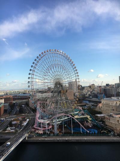 孫と2人 横浜旅行