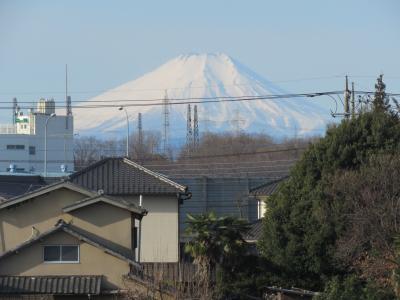 久しぶりにふじみ野市より見られた素晴らしい富士山