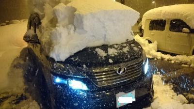 2018年 北海道 さっぽろ雪祭り & 雪あかりの路(6日目) 帰路編Part2