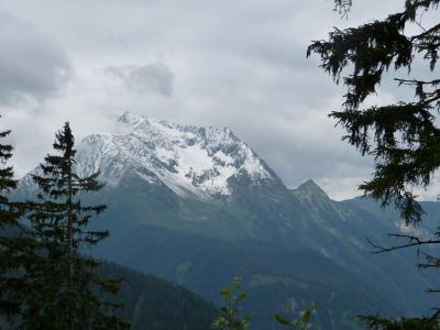 何で私がハイキング? 2016年 オーストリア・スイス 12- マイヤーホーフェン アホルン山