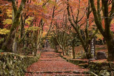 紅葉の絶景「鶏足寺」と古い町並みの「北国街道木之本」(滋賀県湖北)