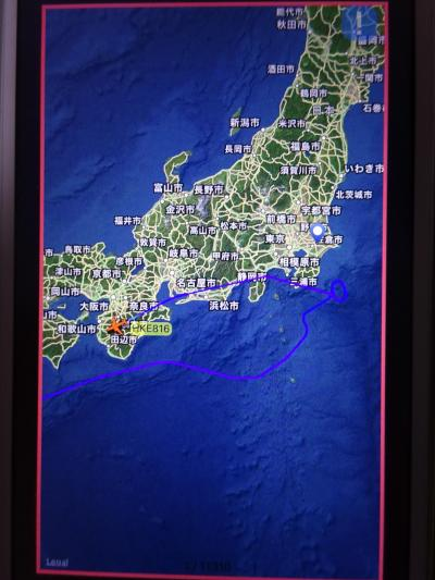 2018/01 ベトナム/ホイアン⑤ 3日目~まさかの4日目:帰路~大雪のため成田から関空にダイバード(泣)