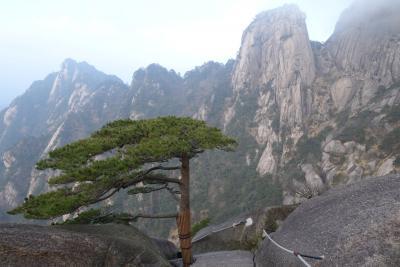 4泊5日シャチin上海 (個人で回る冬の黄山編)