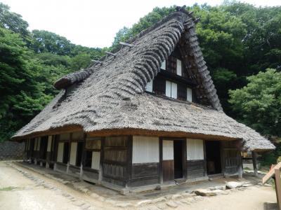 2017年6月 川崎と東京西部散策(1) 川崎