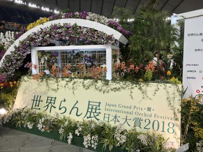 世界蘭展イン東京ドーム
